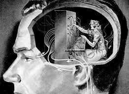 Lidský mozek uvnitř v hlavě
